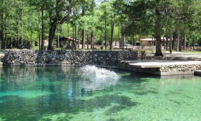Dive Into The ten Greatest Swimming Holes in Florida